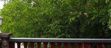 drachenburg-terrasse